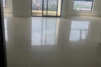 Cho thuê sàn thương mại, DV văn phòng tại CC Roman Plaza, kí HĐ CĐT, LH: 0365256959