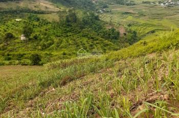 Bán đất Cao Phong Hòa Bình diện tích rộng 75 ha làm sinh thái nghỉ dưỡng