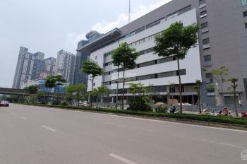 Cho thuê mặt bằng tại Tôn Thất Thuyết, diện tích 250m2, mặt tiền hơn 30m. Giá 779.135 đ/m²/th