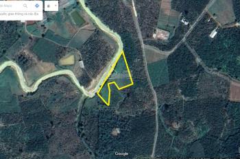 Bán 3.822 m2 đất tại TP Bảo Lộc, tỉnh Lâm Đồng