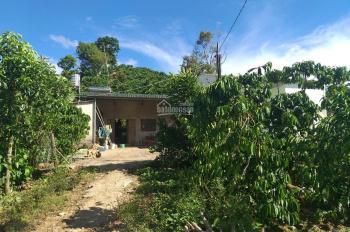 Bán đất nghỉ dưỡng nhà vườn view ao đồi, TP Bảo Lộc