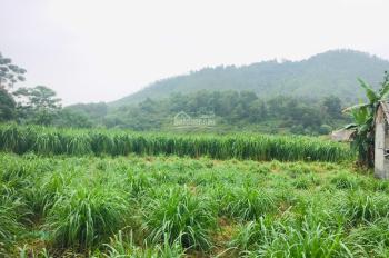 Bán đất xóm Chóng - Yên Bài - Ba Vì - Hà Nội.