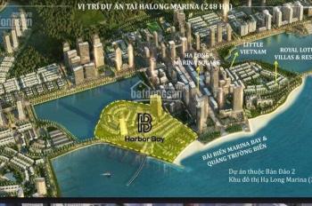 Bảng hàng dự án Harbor Bay, vẫn liên tiếp vào cọc chỉ còn một vài căn cuối cùng với chính sách tốt
