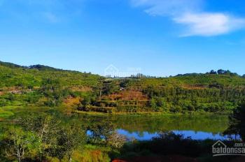 Bán dự án khu resort mini ở Hồ Tuyền Lâm, view cực phẩm cho nghỉ dưỡng