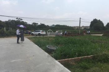 Đất nền Hòa Lạc gần khu CNC Hòa Lạc, giá chỉ từ 900tr/lô 125m2. Sổ đỏ trao tay