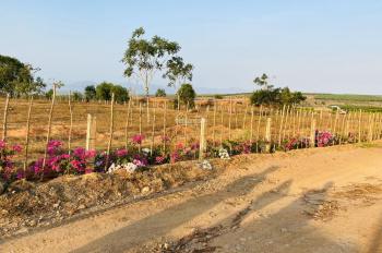 Bán khu đất vườn 7000m2 thích hợp đầu tư giá 70.000đ/m2. LH: 0919626750