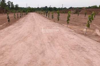 Đất Trảng Bom, sổ hồng riêng từng nền