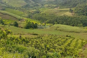 Có bán 75ha 750.000m2 làm du lịch nghỉ dưỡng có sẵn thác nước chảy và view cao tại Hòa Bình giá đẹp