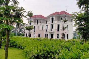 Biệt thự chục tỷ Centa City Vsip Bắc Ninh có gì đáng mua mà hot vậy?