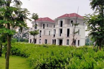Bùng nổ 10 căn biệt thự view hồ, view công viên đẹp nhất dự án Centa City Vsip Bắc Ninh