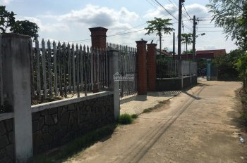 Bán vườn bưởi gần nhà thờ Tân Triều, xã Tân Bình, Vĩnh Cửu
