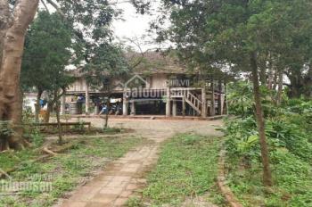 Bán 5900m2 có 400m2 đất thổ cư xã Nhuận Trạch, huyện Lương Sơn, Hòa Bình