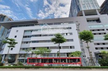 Cho thuê tầng 1 tòa nhà Toyota Mỹ Đình, 250m2, mặt tiền 34m, làm ngân hàng, cafe