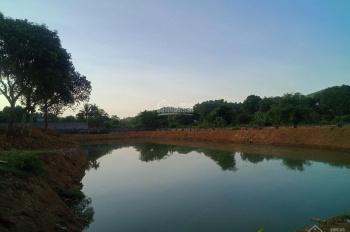 Cần bán 8000m2 đất có 400m2 đất ở tại Lương Sơn, Hòa Bình, LH 0986.061.084