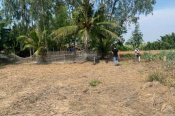 Bán gấp trong tuần (đến 06/06) lô đất công 60/357 Phước Khánh, Nhơn Trạch, Đồng Nai, hướng Đông Nam