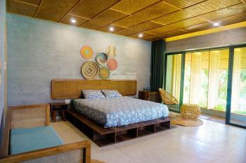 Bán villa view lúa 8PN Hội An thiết kế đẹp