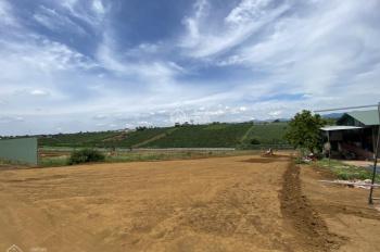 Bảo Lộc Park Hill - gần Green Valley. Mảng xanh thiên nhiên tạo nên cuộc sống hài hòa bền vững