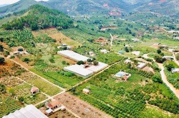 Bán đất nghỉ dưỡng Lâm Đồng, giá chỉ từ 4 xx tr/lô