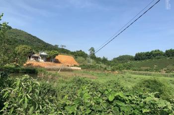 Bán đất nền cạnh Vinpearl Tuyên Quang