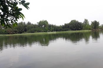 Bán đất mặt sông lớn Phú Đông, Phú Hữu, Phước Khánh đường ô tô tới đất, đất sạch, sổ hồng riêng