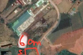 Đất mặt tiền có thổ cư đường Lý Thái Tổ, Bảo Lộc, SĐCC, giá đầu tư