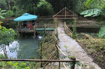 Bán trang trại nghỉ dưỡng - vườn cây ăn trái Long Thành, Đồng Nai