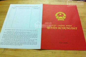 Mặt ngõ 165 Dương Quảng Hàm, Quan Hoa, Cầu Giấy 60m2, MT 5.5m ô tô, kinh doanh tốt 110tr/m2