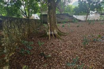 Cần chuyển nhượng lô đất 1620m2 đã có khuôn viên tường bao xung quanh tại Liên Sơn, Lương Sơn, HB