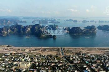 Chỉ 28 triệu/m2 sở hữu lâu dài lô đất mặt biển Cẩm Phả - 6 tháng nhân đôi tài sản, LH 081.6646.033