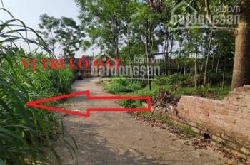 Nhượng lại 1033m2 thổ cư vuông đẹp - đường xóm Mới, Tản Lĩnh, Ba Vì, Hanoi. SĐT 0973427631