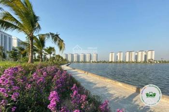 Bán đất biệt thự Thanh Hà Cienco 5 giá ưu đãi tốt nhất thị trường LH 0988606750
