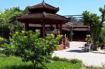 Cần bán nhà vườn trung tâm thành phố, P Nghĩa Chánh, đường Quang Trung