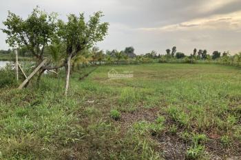 Bán lô đất vườn mặt tiền đường kênh lớn (xã Bình Mỹ, Huyện Củ Chi)
