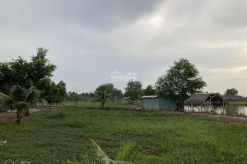Bán đất vườn mặt tiền đường Kênh Đá Hàng, xã Bình Mỹ, Củ Chi