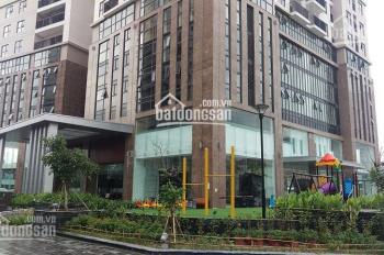 Bán gấp căn hộ cao cấp Hà Đô Park View, công viên Cầu Giấy, Dịch Vọng. 92m2 - 02PN - sửa đẹp