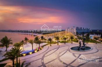 Mua nhà chỉ cần 390tr, vay lãi suất 0% trong 3 năm, ưu đãi khủng chỉ có tại Vinhomes Ocean Park