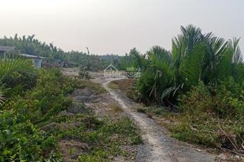 Cần tiền kinh doanh bán lại gấp miếng đất vườn 1000m2 Hiệp Phước, Nhà Bè, TP HCM, giá 1,1 tỷ, TL