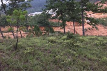 Cần bán đất 10.000m2: 1 hecta nằm cạnh suối xã Lát, huyện Lạc Dương