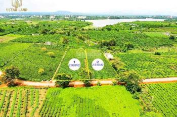 Thanh lý 6000m2 đất view hồ Bảo Lâm, xung quanh đồi chè - Lên được TC cách Bảo Lộc 6km - 2,7 tỷ/nền