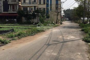 Bán đất 52,2m2 tại Thạch Bàn quận Long Biên, hướng Đông Bắc MT 4m giá chỉ 50tr/m2 ngõ ô tô quay lại