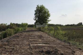 Còn duy nhất 1 lô đất Phước Khánh, 1000m2 đường xe hơi tới đất, khu dân cư, SHR, giá chỉ 1.5 tỷ