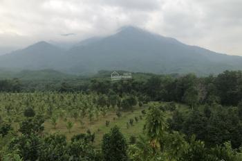 Bán đất trang trại 8ha - đất ở 800m2 mặt tiền QL 14G 320m Đà Nẵng ngay gần Núi Thần Tài