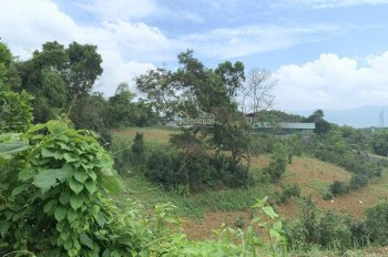 Chính chủ bán 14000 m2 tại xã Hòa Sơn, Lương Sơn, Hoà Bình, 535 nghìn/m2
