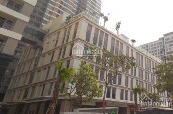 Cho thuê tòa nhà mặt tiền đường Phổ Quang - Đào Duy Anh, quận Phú Nhuận - diện tích sàn 8000m2