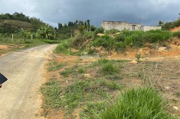 Đất 2 mặt tiền Bảo Lộc, Lâm Đồng địa thế đẹp giá 270 nghìn đồng/sào