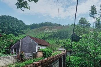Cần bán view núi siêu đẹp DT 1900m2 đất Vân Hoà, Ba Vì, Hà Nội