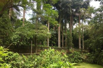 Cần bán nhanh lô đất 5200m2 đã có khuôn viên tường bao xung quanh giá rẻ tại Hòa Sơn, LS, HB