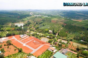 Cần bán gấp lô đất view đồi cách TT TP Đà Lạt, chỉ 3km để nghỉ dưỡng hoặc đầu tư LH ngay 0924046746