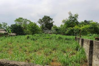 Cần thanh lý rẻ lô đất 1800m2 chỉ với 1.4 tỷ, tại xã Yên Bài, Ba Vì, Hà Nội