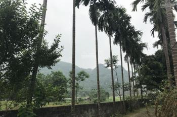 Nhà có mảnh sổ đỏ 1875m2 view hồ Đồng Chanh cách KĐT sinh thái Dầu khí Eco 700m, đã có đất ở 400m2